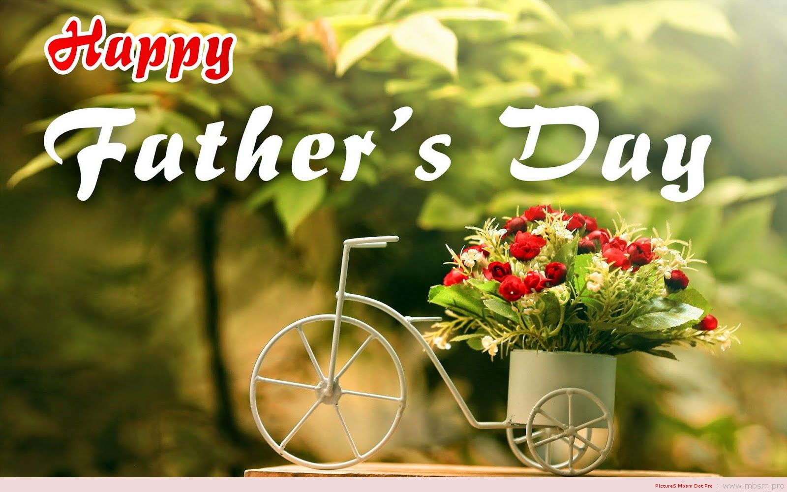 mbsm-dot-pro-wwwmbsmpro--fathers-day-celebrate-it-on-the-third-sunday-of-june