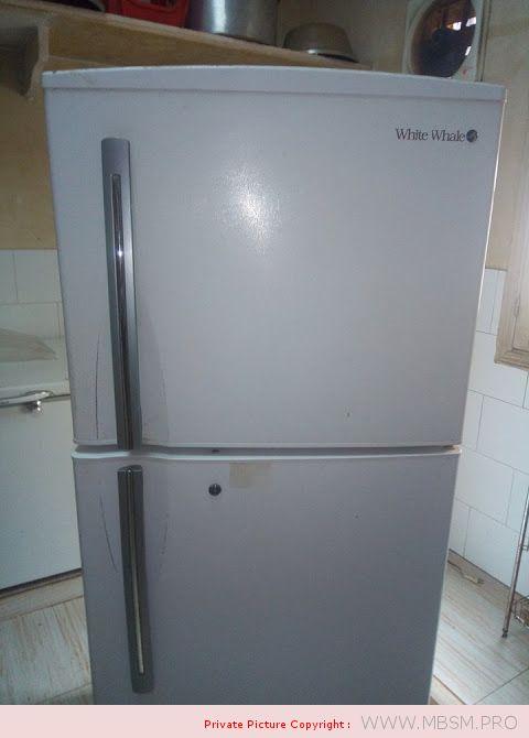 r134a-fl1568sl-hitachi-compressor--220-v-50hz-14-hp--white-whale-18feet-lbp-200w-mbsm-dot-pro
