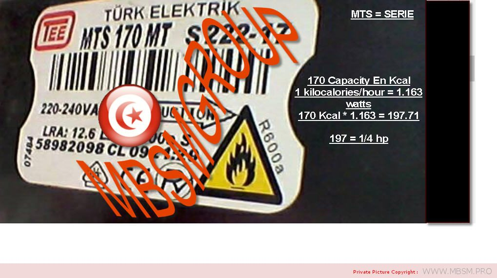 compresseur--turkish-electric-ntu-170-mt-220240v-50hz-r600a-pour-refrigerateur-beko-14hp--lbp--lra-124a-197w-capacity-170kcal-mbsm-dot-pro
