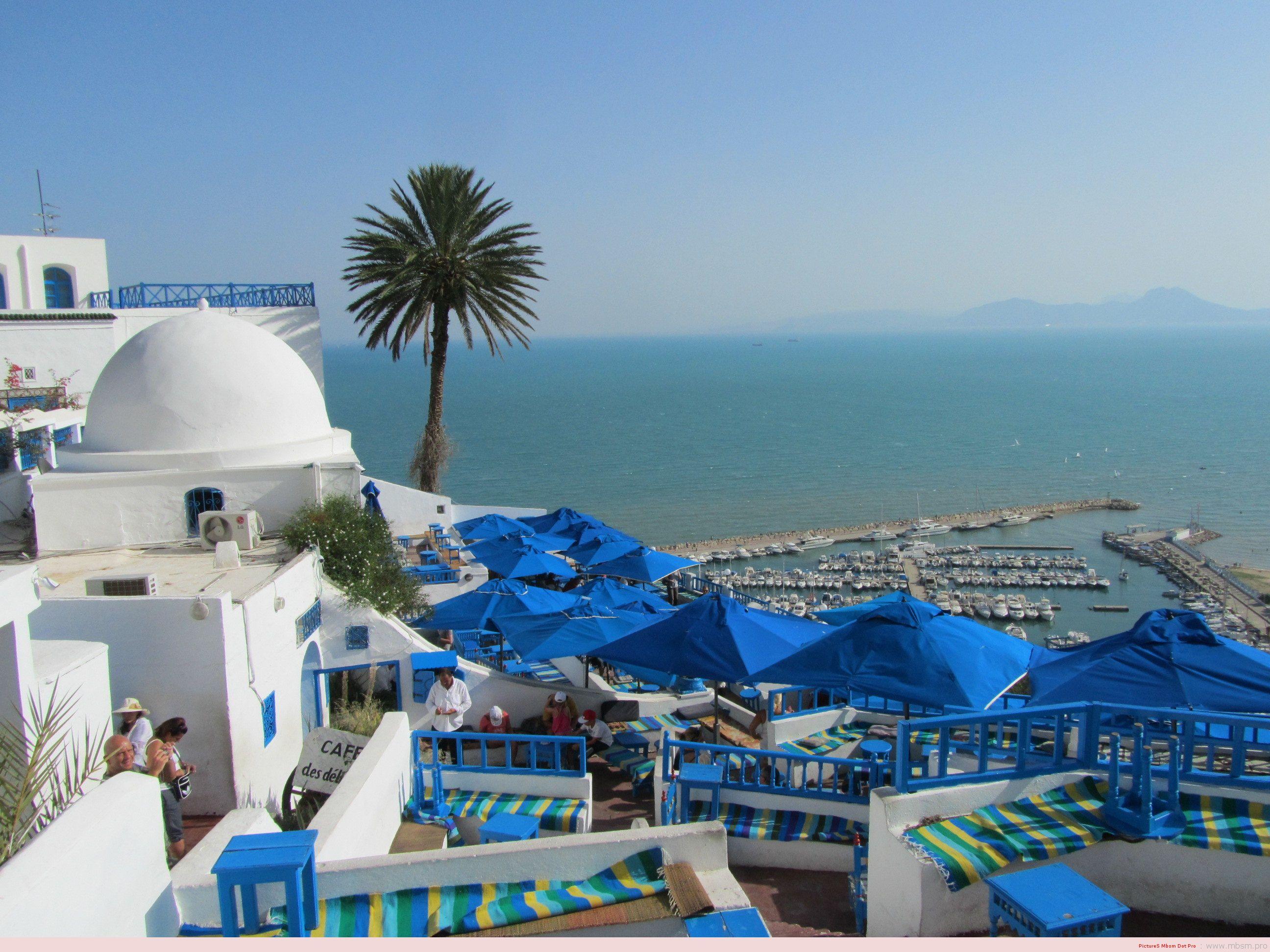 mbsm-dot-pro-wwwmbsmpro--bienvenue-au-caf-des-dlices-ma-tunisie